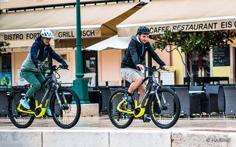 8439a4507a2ad8 Haibike Sduro E-Bikes günstig online kaufen bei bikester.at